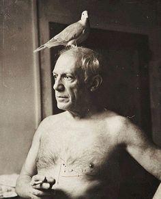 Put a bird on it, Picasso! (Pablo Picasso by James Lord) Pablo Picasso, Art Picasso, Picasso Dove, Georges Braque, Famous Artists, Great Artists, Cubist Movement, Foto Portrait, Portraits