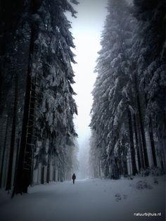 8 tips voor het fotograferen van sneeuwlandschappen