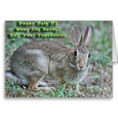 Vegan Rule #2 Obey the Bunny! Gifts & Apparel Greeting Card  by Lee Hiller #Photography and Designs