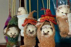 Dangling Hedgehogs