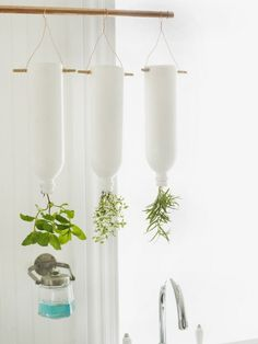 Hydroponic Gardening Hanging Around Takes Tres - A comprehensive list of creative ideas for creating your own indoor herb garden, complete with images and easy instructional overviews. Hydroponic Gardening, Hydroponics, Organic Gardening, Container Gardening, Herb Gardening, Gardening Vegetables, Indoor Gardening, Herb Garden In Kitchen, Kitchen Herbs