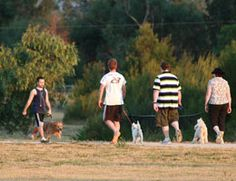 Information on: walking in Vic, walking in Knox, group walking, walk maps. Encouraging families to maintain physical activity together. Family Units, City Council, Quality Time, Physical Activities, Physics, Maps, Families, Walking, The Unit