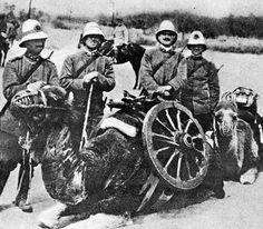 "Italo-turkish war, Libya, 1911: four italian soldiers in the new grigioverde uniform poses with their ""mehari"" dromedary Pin by Simone Brusati"