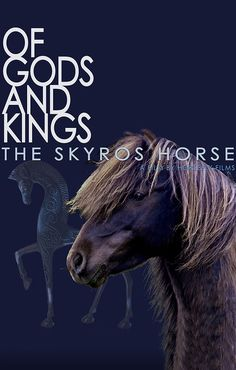 This documentary film introduces the critically-endangered Skyrian Horse of Skyros Island in Greece and the people who are trying to save them. These horses have gone to battle for humanity and now their fate lies in our hands.  Watch it now on HorseLifestyle.TV