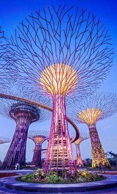 """Si quieres visitar un jardín como pocos hay en el mundo, deberás ir pensando en viajar hasta Singapur.  """"Gardens by the Bay"""" es en realidad, un conjunto de tres súper jardines con todo tipo de vegetación. Dos grandes invernaderos y un espacio urbano al aire libre realmente increíble.  Como las enormes estructuras que asemejan árboles y entre los que puedes pasear mediante una plataforma elevada.  ¡No deles de #viajar!"""