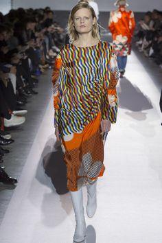 Dries Van Noten Fall 2017 Ready-to-Wear Fashion Show - Hanne Gaby Odiele (IMG)