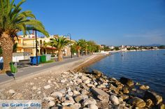 Petalidi is a village situated on the western shore of the Messenian Gulf,18 km southwest of Kalamata in peloponnese,Greece