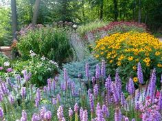 Minnesota Garden