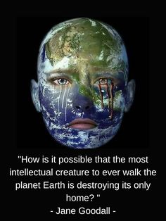 Global warming pollution Earth activism save EPA environmental sea level rise flood ice melt over populated human race Jane Goodall, Rainforest Deforestation, Gaia, Save Our Earth, Climate Change Effects, Truth Of Life, Greenhouse Gases, Environmental Issues, Environmental Pollution