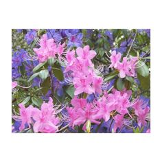 Spring Rhododendrons Floral Canvas Print  #homedecor #pinkflowers #walldecor
