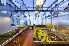 Gallery of Bristol Life Sciences Building / Sheppard Robson - 9