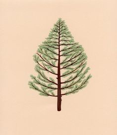 Justin Richel will donate all proceeds of his beautiful cedar tree print to the The Arbor Day Foundation. By buying one you'll not only be helping out an awesome cause, but you'll be getting a lovely tree in return.