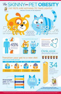 The Skinny on Pet Obesity