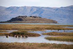 https://flic.kr/p/qnXeEG   Humedal patagónico   A orillas del lago Argentino, en el Calafate, encontramos la pequeña laguna Nimez, que resguarda una buena representación de la avifauna acuática patagónica.