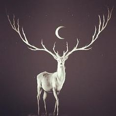 Maybe make the stag look a bit more tree like and add some ravens and flowers on the antlers