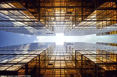 Towers with their tops in the heavens... Breathtaking pictures show the skyscrapers of Hong Kong from the perspective of those who stand at their feet | Mail Online