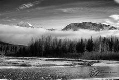 Seward fog. Photo courtesy of © Elaine Howell.