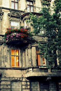 old apartment house, with #flowers on the balcony, #wroclaw