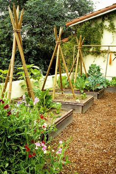Very nice garden with small raised beds with tepees to climb.  Beautiful paths.