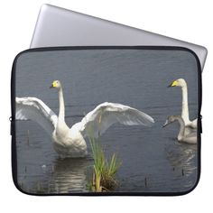 SusannaH_photography: products on Zazzle Computer Sleeve, Laptop Computers, Swan, Sleeves, Photography, Design, Swans, Photograph, Fotografie