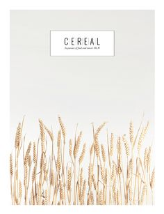 Cereal Magazine - This magazine and blog are filled with stunning photographs about food and travel.