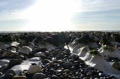 Coast East Sussex III