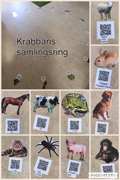 QR codes from images, sounds and videos on your device. Preschool Library, Preschool Science, Games For Kids, Activities For Kids, Circle Time, Ipad, Creative Kids, Pre School, Diy And Crafts