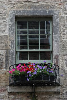 Edinburgh Window