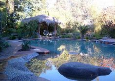 Back To Nature With Natural Swimming Pools: Natural Swimming Pool Design Picture LaurieFlower 024