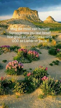 Good Morning Greetings, Good Morning Wishes, Good Morning Quotes, Inspirational Qoutes, Inspiring Quotes About Life, Lekker Dag, Positive Quotes For Women, Afrikaanse Quotes, Goeie More