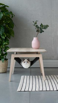 cat furniture Kikko + Lulu: Comfy Cat Furniture From Labbvenn - Design Milk Yanko Design, Pet Furniture, Barbie Furniture, Furniture For Rooms, Furniture Design, Home Improvement Loans, Cat Room, Small Cat, Bed Design