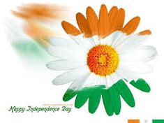 The Independence Day Theme Kitty Party is the best theme for the month of august. Check out various fun and interesting games for Independence Day celebration. Independence Day Offers, Independence Day Theme, Happy Independence Day Wishes, India Independence, Kitty Party Themes, Cat Party, Happy Independence Day Wallpaper, Happy Pregnancy, Pregnancy Period
