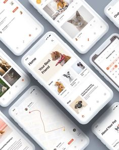 """Social Pets App UI Kits Social Pets App UI Kits designed in Sketch, XD & Figma. Click link in bio and search """"Social"""" to check out this… Flat Ui, Ui Kit, App Ui, Nintendo Consoles, Sketch, Pets, Link, Check, Design"""