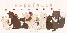 I totally think Iggycat is jealous on Japancat, and Neko!Gerita is too cute for me