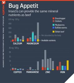 2016_10_27 MineralContentInsects.r2