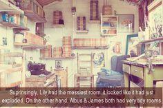 Sorprendentemente, la habitación de Lily era la más desordenada: parecía que había explotado. Por otro lado, Alubs y James tenían habitaciones ordenadas.