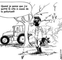 Pesticides... Triste réalité...