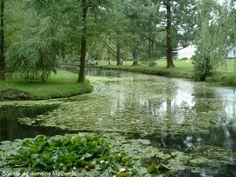 L'anneau d'eau en été du Domaine de Maizerets Nature, Golf Courses, Country Roads, Landscapes, The Great Outdoors, Mother Nature, Scenery, Natural