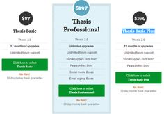 thesis reviews wordpress