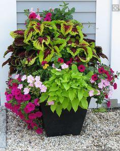 Plants Planter Ideas, Outdoor Flower Planters, Orchid Planters, Outdoor Flowers, Hanging Planters Outdoor, Tiered Landscape, Landscape Design, Garden Design, House Landscape