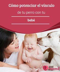 Cómo #potenciar el vínculo de tu perro con tu bebé Si quieres potenciar el #vínculo de tu #perro con tu #bebé, deberás empezar a trabajar en ello antes de que el bebé llegue a casa. Descubre cómo hacerlo.