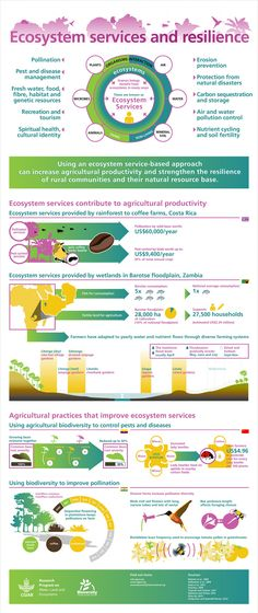how ecosystem services contribute to agriculture and vice versa (Infographic) | ScienceDump