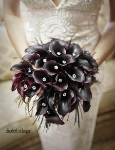 Black Lillies