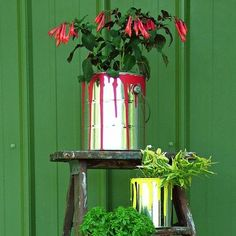 Get all the helpful tips and tricks you'll need to grow a lush container garden.