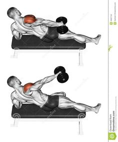Exercising Lifting A Dumbbell In One Hand Side L Stock Illustration Illustration of lying side 43667142 Exercising Lifting A Dumbbell In One Hand Side L Stock Illustration Illustration of lying side 43667142 arbilac Fitness nbsp hellip Fitness Workouts, Weight Training Workouts, Gym Workout Tips, Dumbbell Workout, Workout Videos, At Home Workouts, Shoulder Workout, Bodybuilding Workouts, Muscle Fitness