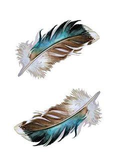 Feathers  Two Mallard Feathers  Blank Card by jodyvanB on Etsy, $5.00