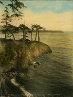 Washington State Historical Society - Tinted 1924 image of a few stunted fir trees on a rocky point protruding into Puget Sound west of Deception Pass, Island County, WA.