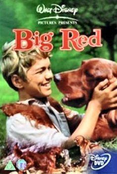 Born 1962, Movie Worth, Movie Memories, Wonder Movie, Kids, Red 1962, Big Red, 1962 Big, Disney Movie