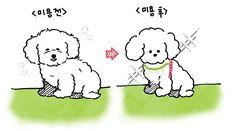 Exo Fan Art, Kpop Fanart, Sehun, Chibi, Pets, Drawings, Fictional Characters, Sketches, Drawing