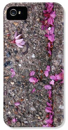 Philadelphia Street Art iPhone 5 Case / iPhone 5 Cover ~ a close-up photograph of Philadelphia's Van Pelt Street strewn with fallen pink cherry blossoms.   www.ronablack.com